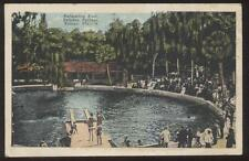 Postcard TAMPA Florida/FL  Sulphur Springs Swimming Pool view 1910's