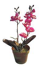 Artificial Phalaenopsis Orchid Plant ,Vivarium Plant