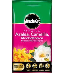 Miracle Gro Premium Azalea, Camellia & Rhododendron Ericaceous Compost 10 Litres