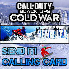 Call of Duty Black Ops Cold War Warzone Item Code SEND IT Calling Card 🏂🏂