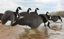 White Rock Canada Goose 3D Headed Silhouette Blackout Decoy, Dozen