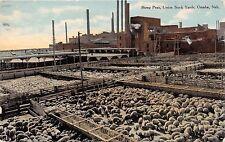 OMAHA NEBRASKA SHEEP PEN~UNION STOCK YARDS~BARLALOW PUBL POSTCARD 1910 PSTMK