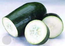 Black wax gourd Winter Melon Seeds Vegetable seed organic heirloom home garden