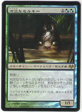 MTG Japanese Foil Cold-Eyed Selkie Eventide NM