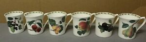 """Queens Fine Bone China """"The Royal Horticultural Society"""" Hooker's Fruit  6 Mugs"""