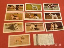 hornimans tea cards DOGS x11