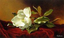 Martin Heade A Magnolia on Red Velvet Handmade Oil Painting repro