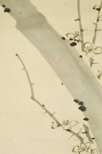 "JAPANESE PAINTING HANGING SCROLL 54.9"" Plum Ink AGED Tree KAKEJIKU Japan c105"