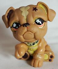 Littlest Pet Shop #607 Brown Tan Bulldog Puppy Dog Orange Eyes Toy LPS Hasbro