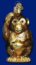 Chimpanzee Ornament Glass Old World Christmas 12112 22