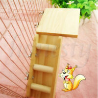 Hamster Toys Seesaw Rat Swing Mouse Harness Parrot Wooden Ladder Springboard