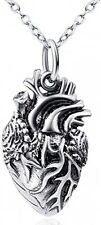 DACHMA 925 Sterling Silver Anatomical Human Heart Pendant Necklace 18 Unisex