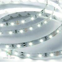 5M 2835 Indoor /Outdoor Flexible Strip Light Cool White 12V 6000K SMD LED Lamp