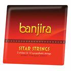 banjira Sitar Chikari and Sympathetic String Set