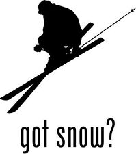 "Got Snow Skiing Car Window Decor Vinyl Decal Sticker- 6"" Tall White"