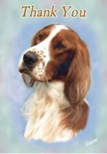 Irish Red & White Setter Thank You Card By Starprint