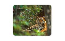 Beautiful Tiger Mouse Mat Pad - Big Cat Lion Animal Jungle Gift Computer #8842