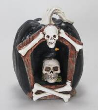 Halloween Pumpkin with Skeleton & Crow LED Lighted Color Changing 6 hour Timer