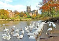 Worcester Cathedral large canvas framed picture signed with certificate