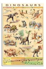 Dinosaurier Lern Plakat Neu