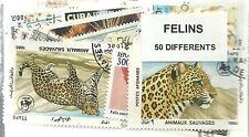 "Lot timbres thematique "" Felins """