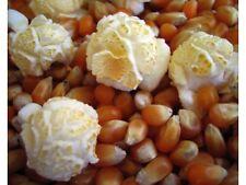 Mushroom Kernel Popping Corn Popcorn 3 Pounds