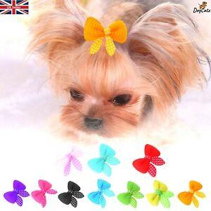 Pretty Dog Hair Bow Clips, Puppy Cat Kitten Bows, Red Pink Purple Orange Blue