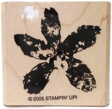 Stampin Up Paint Prints Rubber Stamp Flower Stamping New