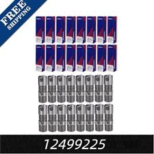 16 Hydraulic Roller lifters Fit Gm Ls7 Ls3 Ls2 Lq4 Lq9 4.8 5.3 6.0 Fit 12499225