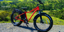Ion Trail Scout  Fat Tire Electric Mountain Bike