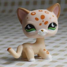 in hand light cream toy LITTLEST PET SHOP LPS mini Action Figures #852