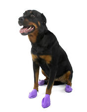 PAWZ 100 Natural Rubber Dog Shoes Re-usable Buy From 1 Boot Lower Large 3 - 4 Inch 2 BOOTS Purple