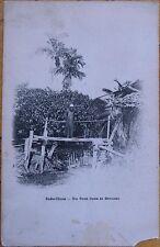 1903 Postcard: Vietnam/Indochina/Indo-Chine - Un Pont Dans La Brousse