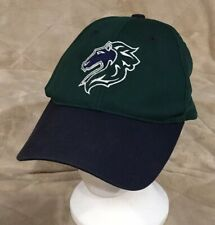 VTG Charlotte Knights Green Adult OSFA Strapback Baseball Hat Cap Minor MILB MLB