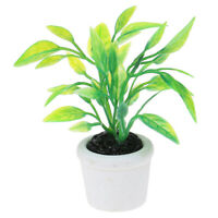 1:12 Dollhouse Miniature Green Plants Decoration Furniture Accessories Toys FE