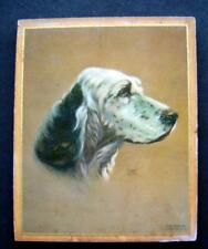 English Setter Dog Art Litho by Alpnarly Lyster 1938 C Moss Wood Plaque