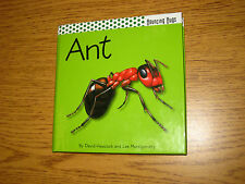 pop up book ANT of the Bouncing Bugs series