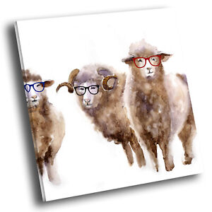 Square Animal Photo Canvas Small Wall Art Picture Prints Brown Sheep Watercolour