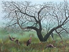 WILD TURKEYS - BY ALLEN FRIEDMAN - HAND SIGNED & NUMBERED ORIGINAL LITHOGRAPH