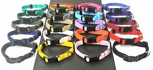 "10""- 15"" Small Dog Collar Puppy Adjustable 13mm Strong Webbing Various Colours"