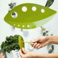 Kale Chard Collard Greens Herb Stripper Loose Vegetable Leaves Kitchen J9Y2