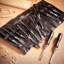Talla de madera conjunto de cincel herramienta de acero 12Pc Kit de carpintería mangos largos Reino Unido Stock!