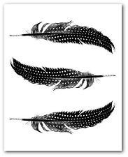 Bird Feathers Print, Black and White Feather Art, 8 x 10 Inches, Unframed
