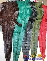 Genuine Real Crocodile Leather -Hide Exotic Pelt Taxidermy -Horn back