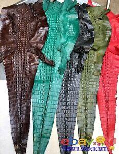 Genuine Real Crocodile Leather -Hide Exotic Pelt Taxidermy -Horn back