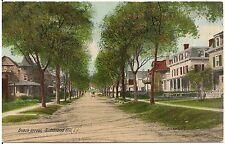 View on Beach Street in Richmond Hill, Long Island NY Postcard 1912