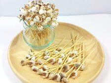 100 Pcs Wood & Seashell Pick Fruit Dessert Cake Cocktail Tooth Picks 2.5''
