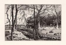 "LOOK CHATTOCK 1800s Original Etching ""Landscape with Sheep & Lambs"" Framed COA"