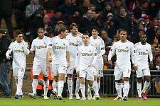 Swansea City Football Equipacion Foto 2012-13 temporada