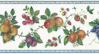 Kitchen Wallpaper Border Fruit Plums Grapes Apples Green Red 5802541 FREE Ship